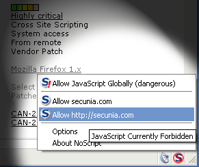 NoScript offers protection for internet use.