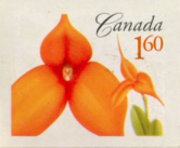 Canada Post 160 stamp - orange flower
