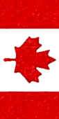 Vertical Canadian Flag