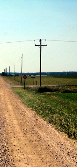 Telephone poles stretched along side a gravel rural road