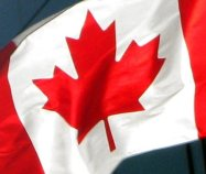 Canadian Flag - Close up of Maple Leaf